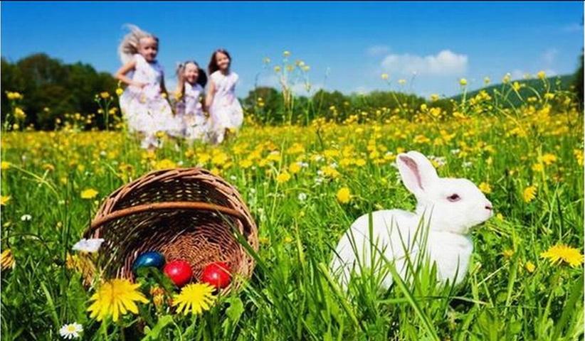 Easter Bunny.Easter egg - اصطلاحات | ایستر اگ اسرار دنیای بازی های رایانه ای